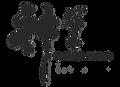 Brushmagic_Logo.png
