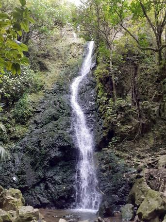 Percy Scenic Reserve