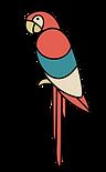 Rosella papagoi2.png