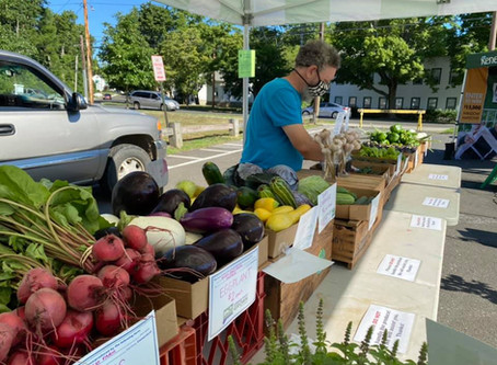 Keep Cool with your Farmers Market Friends