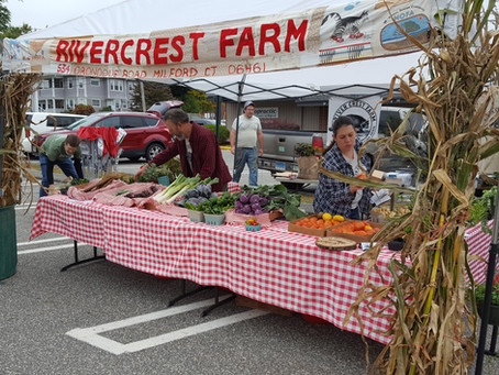 September: Market Season at its Best