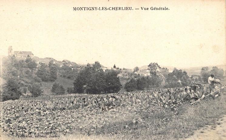 Montigny (13).jpg