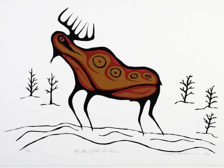 Star stories, part 10 : The Moose on Earth and in the Sky
