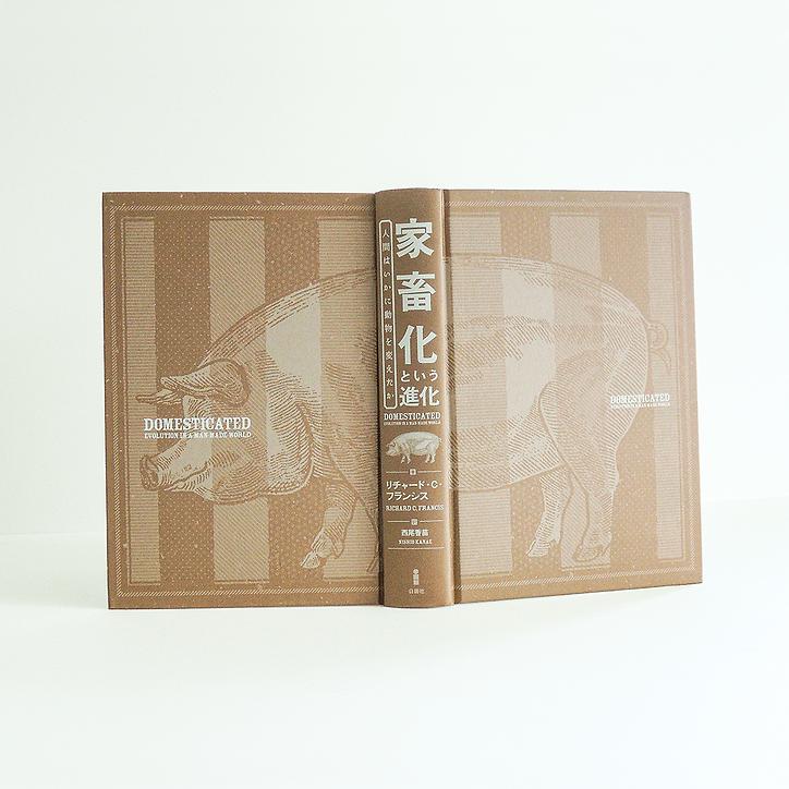 装丁 装幀 装幀 ブックデザイン bookdesign 書籍 本 家畜化という進化 家畜化 人類の進化 動物の進化 進化発生生物学 進化実験 動物の生命史 生物学