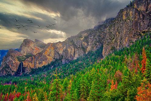 Yosemite Valley South Landscape Print