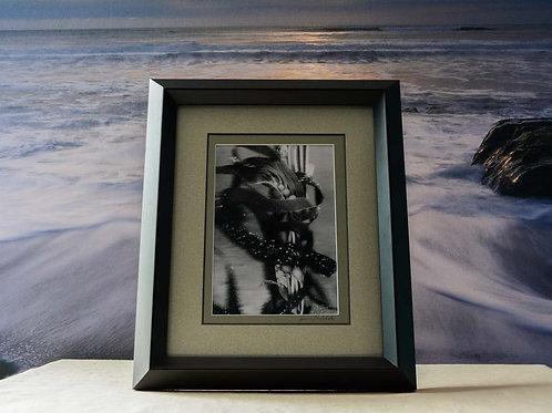 Framed 8x10 Artistic Underwater Fine Art of Giant Kelp