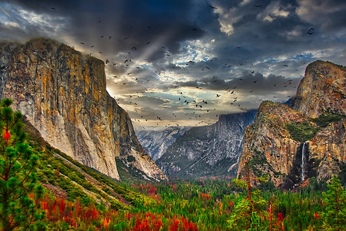 Yosemite Valley North & El Captain Fine Art Print