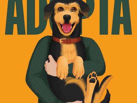 Cinco razones para adoptar un perro y ser más feliz