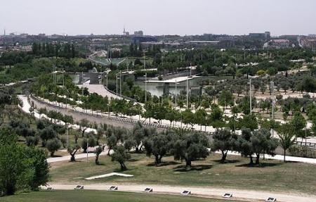El Ayuntamiento de Madrid renueva el anillo del Parque Juan Carlos I
