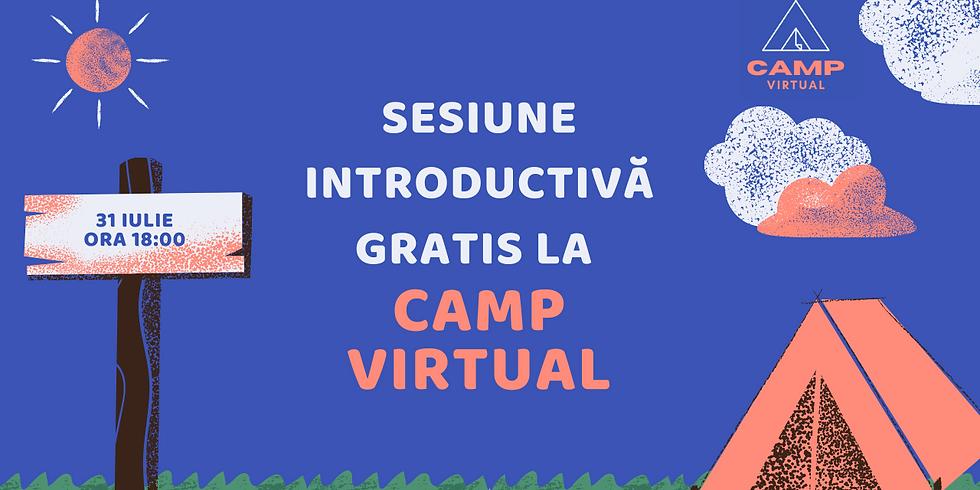 (2) Camp Virtual  - O alternativă de activități distractive în vancanța de vară