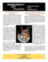 PrinciplesJustTransition-Color-page-001.