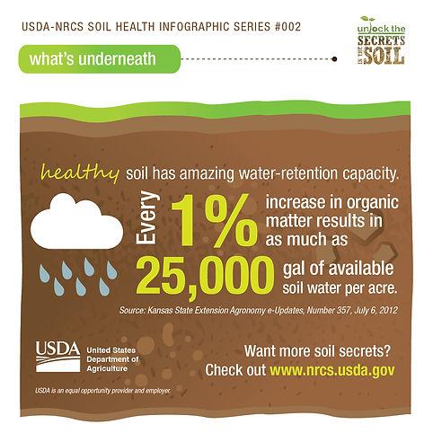 healthysoil-waterholding.jpg