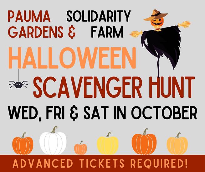 Pauma scavenger hunts (2).png