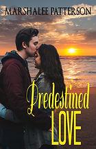 Predestined Love.jpg