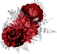 red-and-silver_0002_3.png