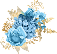 blue-and-gold_0002_3.png