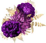 purple-and-gold_0002_3.png