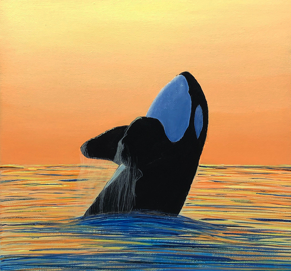 Orca At Sunset No. 3