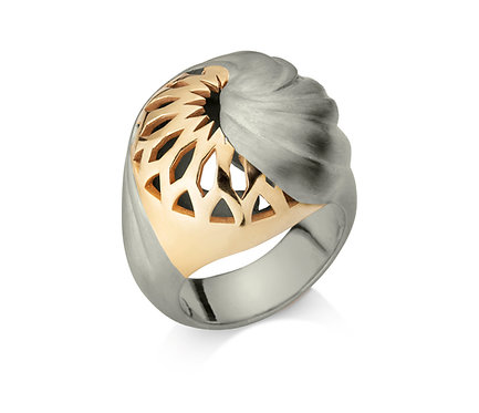 Dome Ring in Gold and Silver
