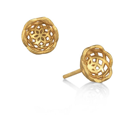 Gregory Baby Earring in Gold