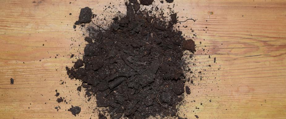 Burnt Peat