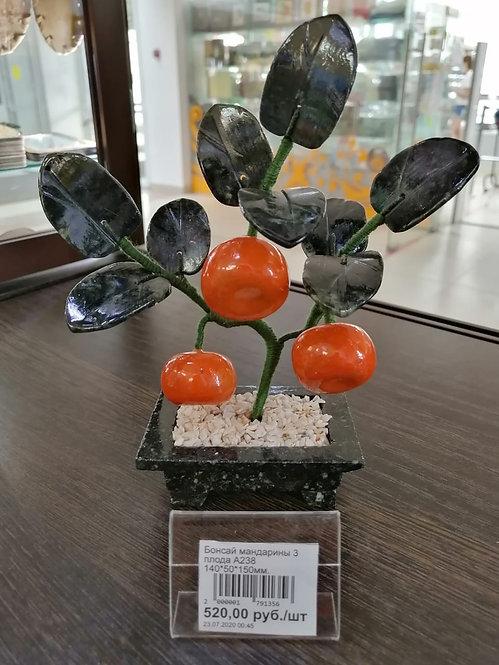 Бонсай мандарина 3 плода
