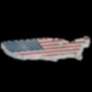 미국-01-01.png