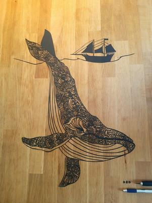 Baleine dentelle
