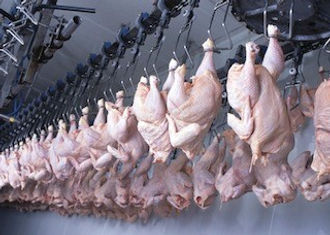 1493990167Chicken Processing plant.jpg