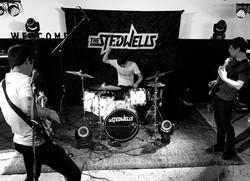 THE STEDWELLS