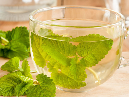 How to Use Lemon Balm for Anxiety
