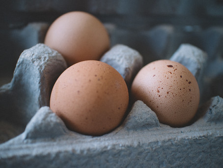 Are Eggs Good or Bad : The Incredible Inedible Egg