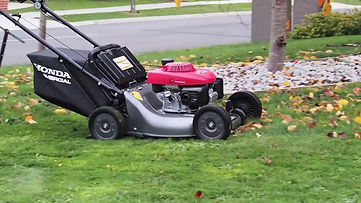 Honda mower.jpg