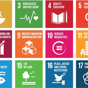 The ACTION Plan for Sustainable Development