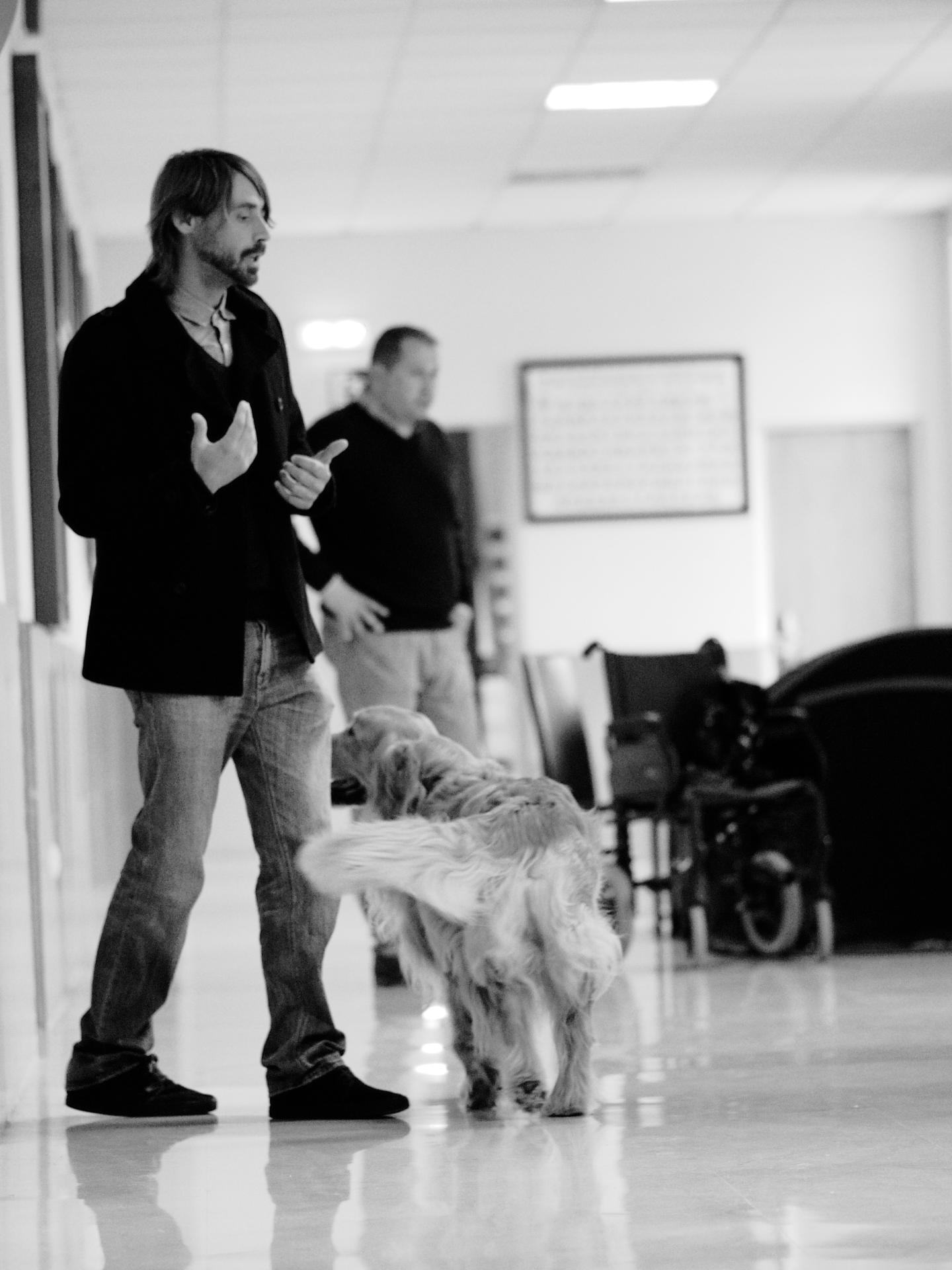 Clase de formación Perros de Apoyo