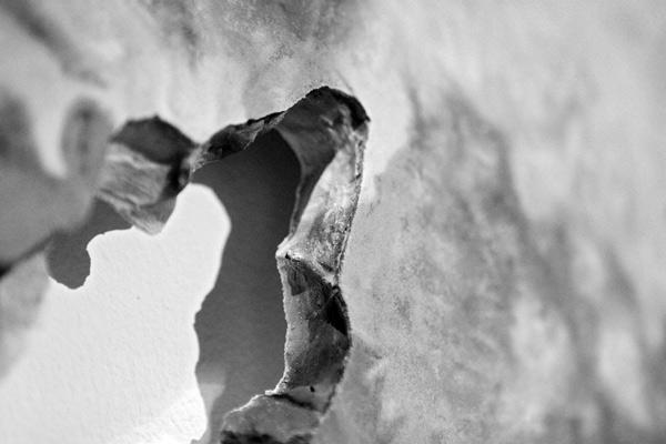 Erosion-detail.jpg