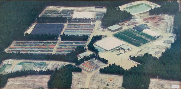Westland Nurseries AerialsWEB-104.jpg