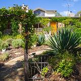 Garden Web 211.jpg