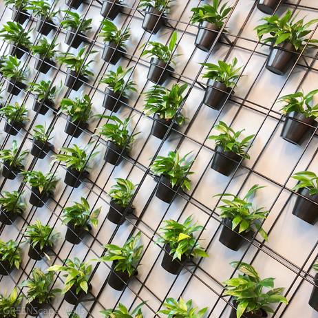 Greenscape Walls-108.jpg