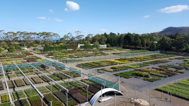 Westland Nurseries 2018