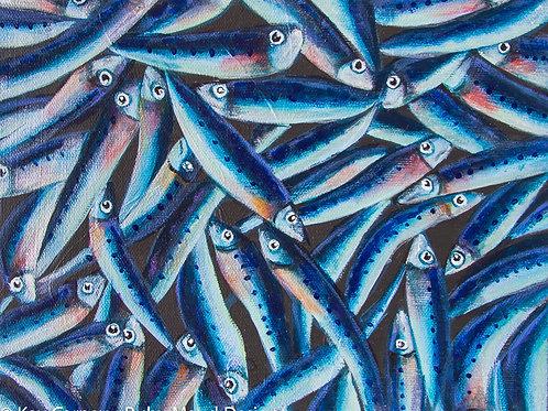 Sardines #4