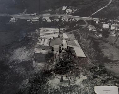 Westland Nurseries AerialsWEB-101.jpg
