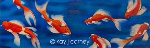 Kay J Carney