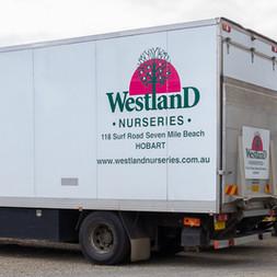 Westland Nurseries-295.jpg