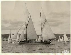 Old Ships Company-613