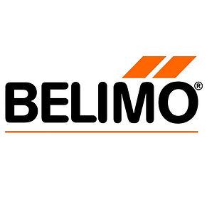 Belimo 2.jpg