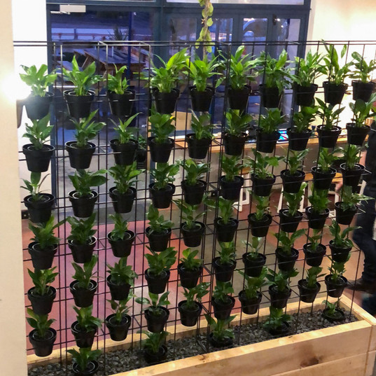 Greenscape Walls-119.jpg