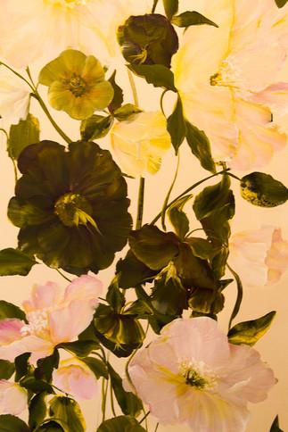 Maureen Innes