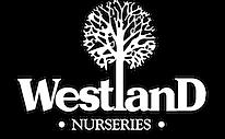 nursery-logo2.png