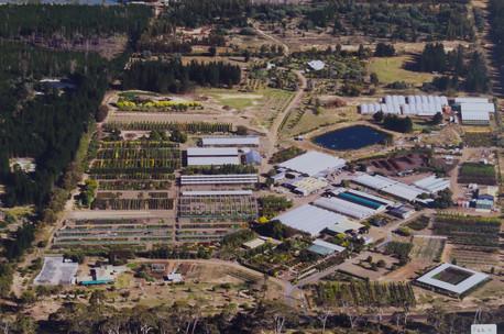 Westland Nurseries AerialsWEB-102.jpg